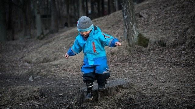 Immunsystem stärken: Waldboden soll Abwehrkräfte von Stadtkindern fördern